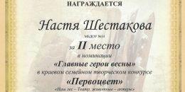 Диплом 2 место Шестакова Настя