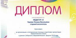Дипломы СОФ 2019 Гареева