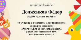 МЕЧТАЕМ О ПРОФЕССИЯХ Долженков Фёдор