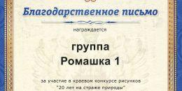 906 группа Ромашка 1