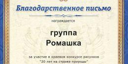 910 группа Ромашка